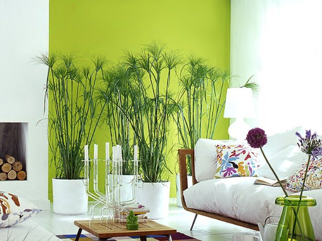 Ruang Tamu Go Green